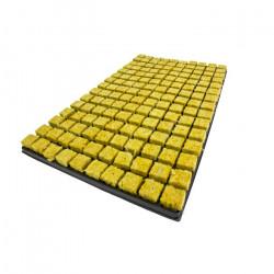 Cultilene Propagator 150 Cubes in a Tray