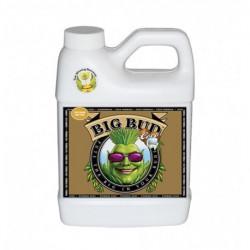 Big Bud Coco 250мл