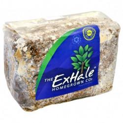 ExHale CO2 торба