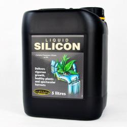 Liquid Silicon -...