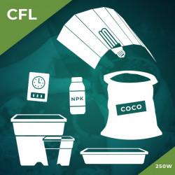 Комплект 250W/CFL- Кокос
