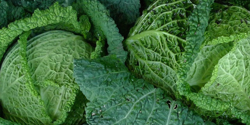 Органичен ли е калиевият сулфат?