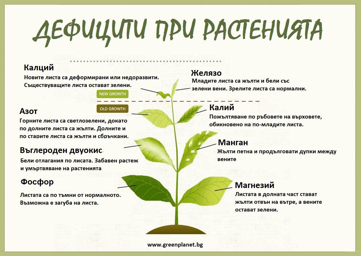 Дефицити при растенията.